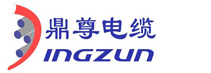 Shanghai Dingzun Electric&Cable Co., Ltd.